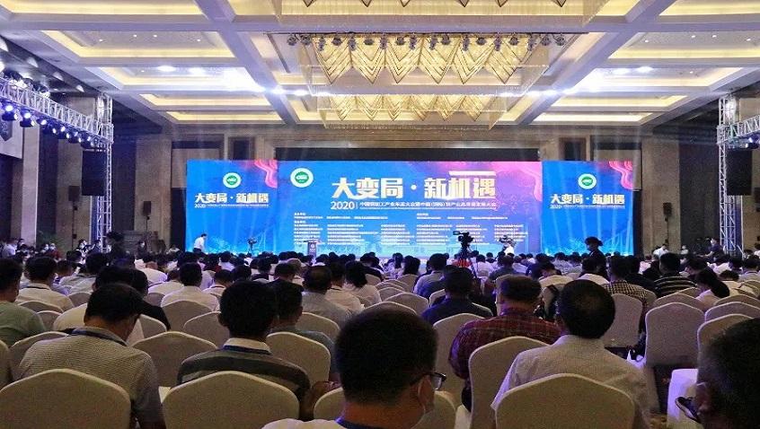 ข่าวดี | บริษัท Hailiang หุ้นส่วนจำกัดได้รับรางวัลเกียรติยศมากมายรวมถึง